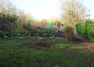 Charmouth Allotments